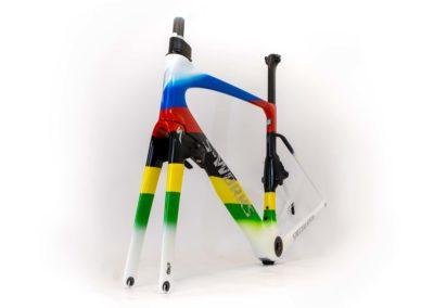 Specialized Venge arc en ciel champion du monde Imola 2020 Julian Alaphilippe